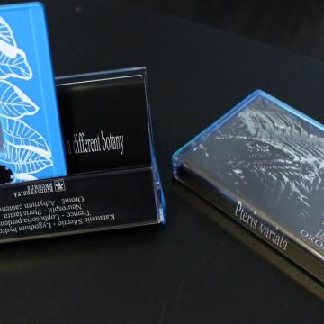 Katatonic Silentio / Tremco / Neurosplit / Oromë - Pteris Variata