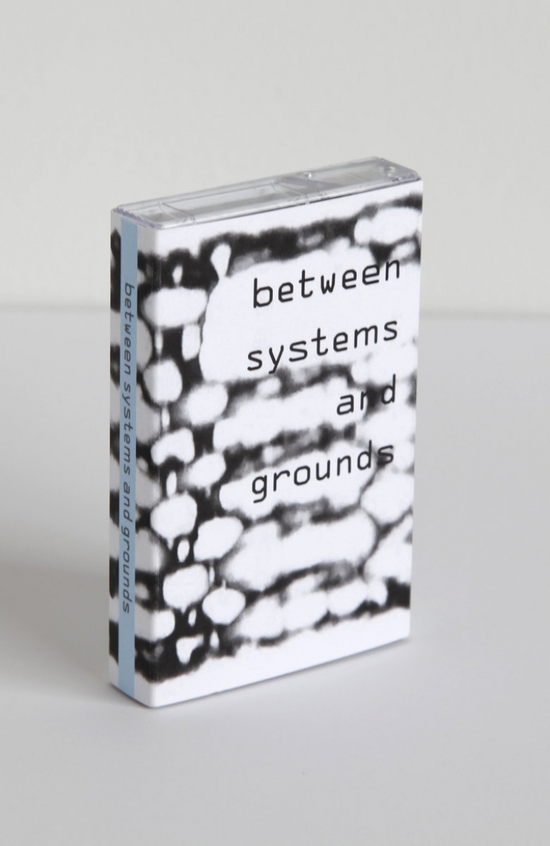 Paula Matthusen And Olivia Valentine - Between Systems And Grounds